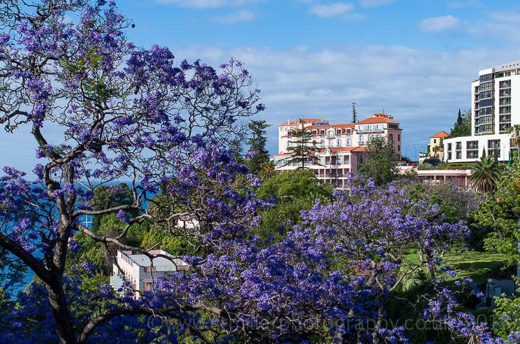 Reids Palace - Funchal