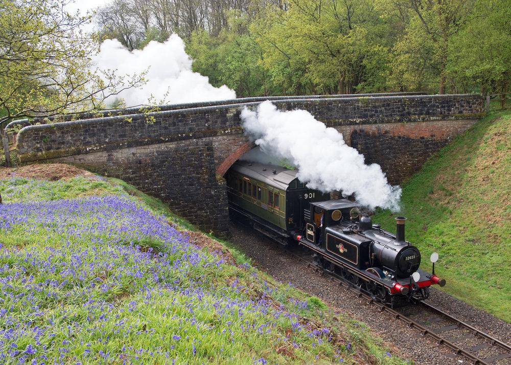 Steam passing Bluebells