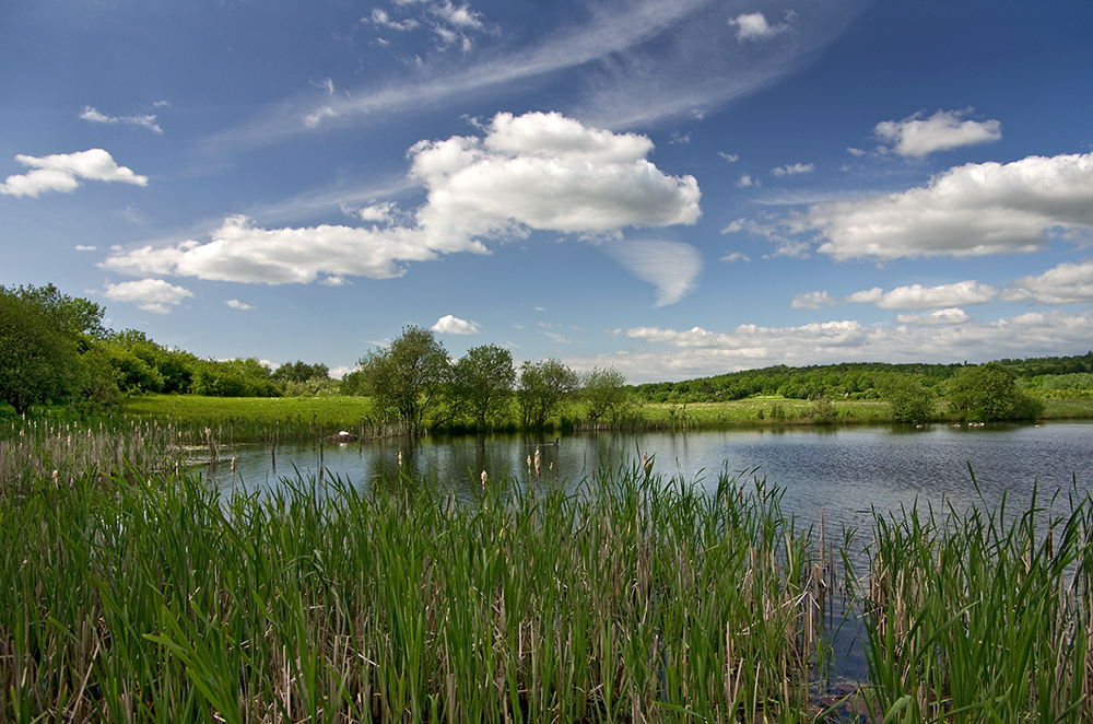 Rother Valley Park