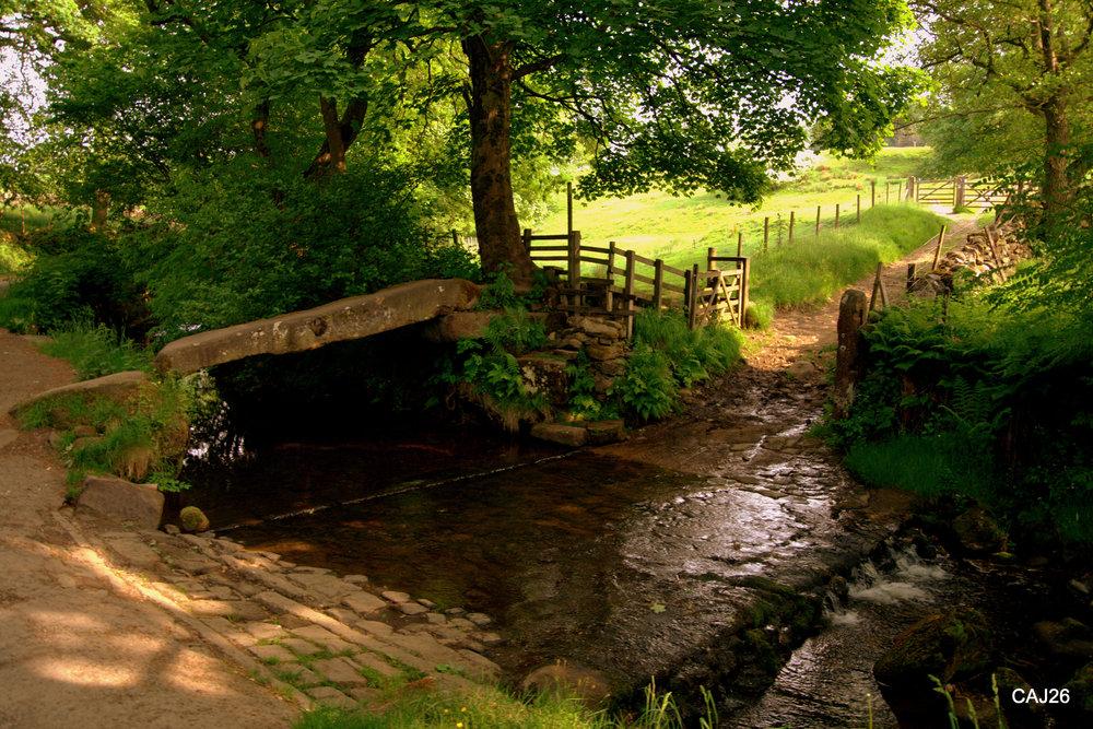 The Clam Bridge