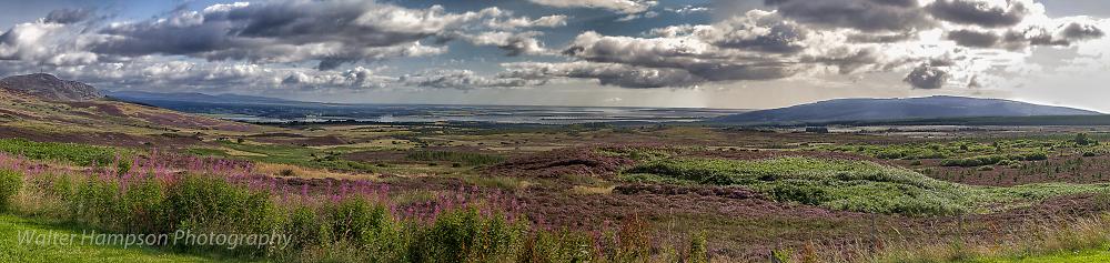 Dornoch Firth Viewpoint