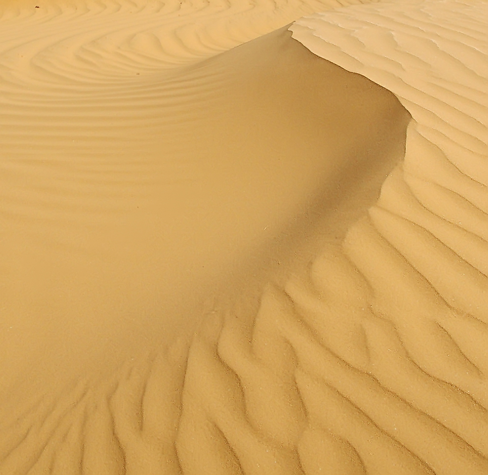 Lines of Desert