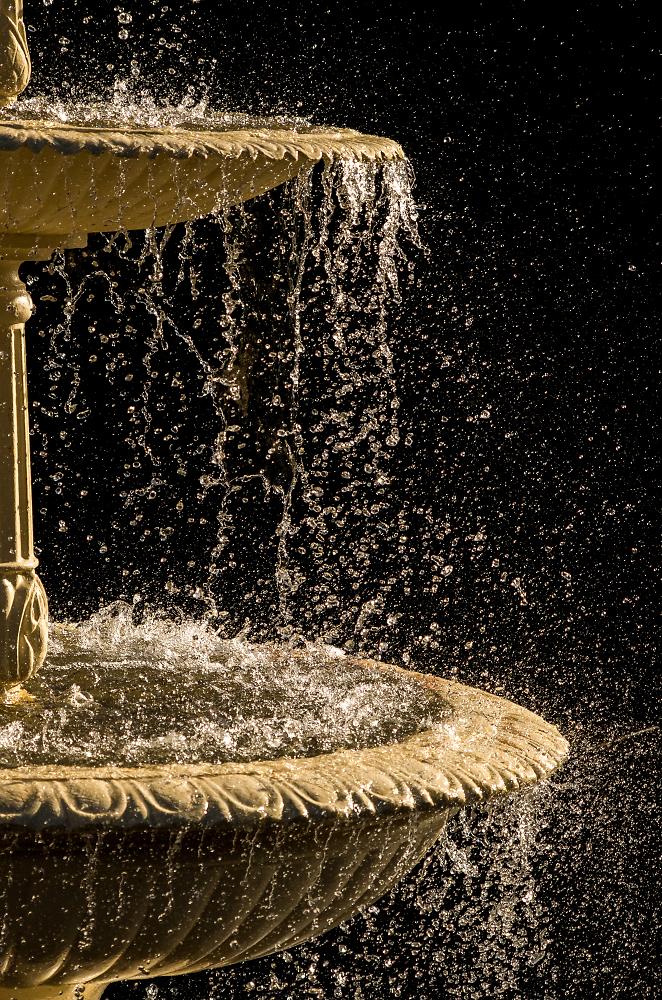 Botanical Gardens Fountain