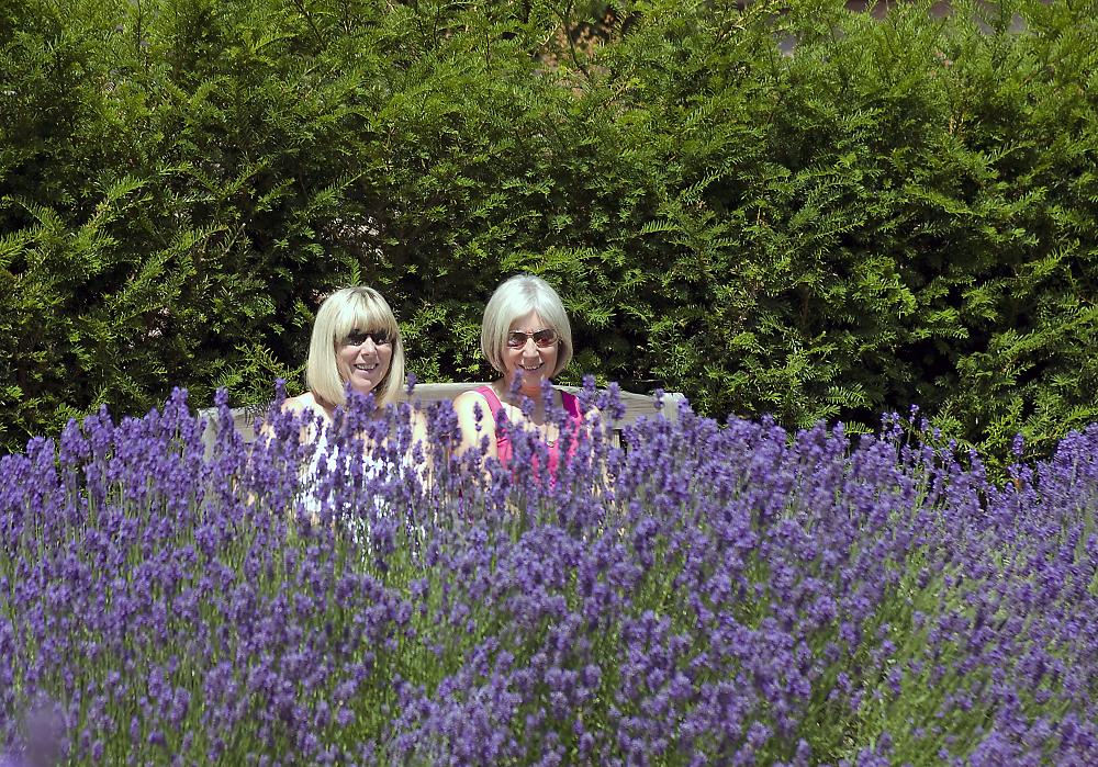 Lavender girls