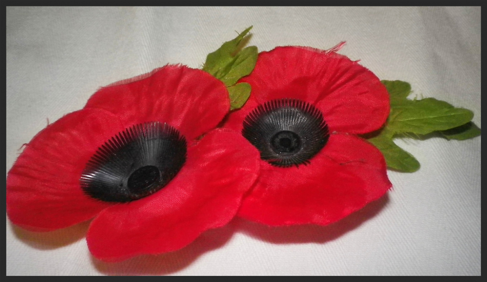 November 11th,  wear your Poppy with pride.