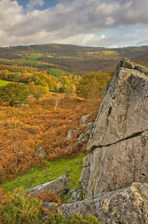 'Sanctuary of Autumn'