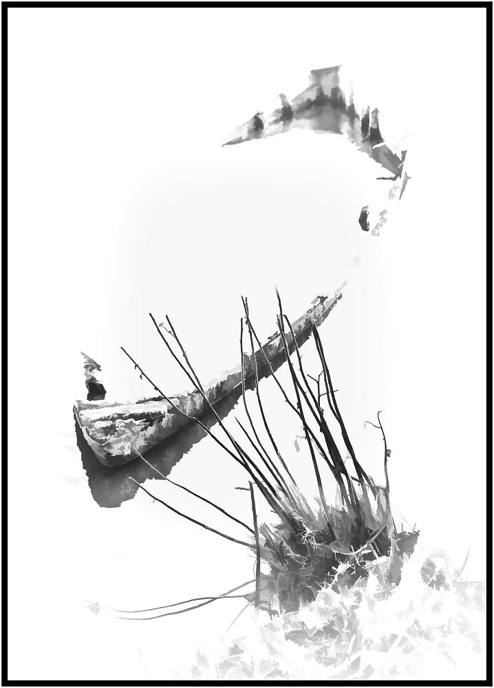 The Wreck of a Sunken Boat II
