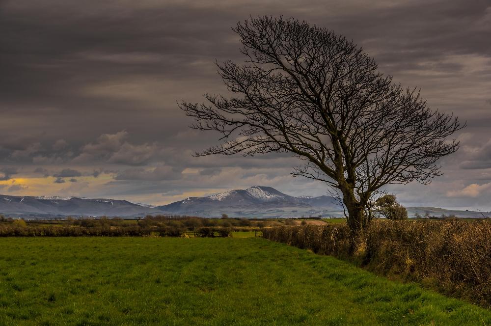 Cumbrian fells from Silloth