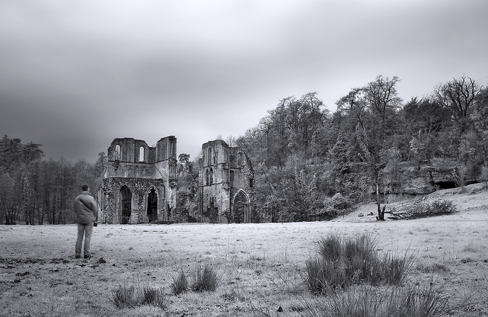 Looking at The Ruins