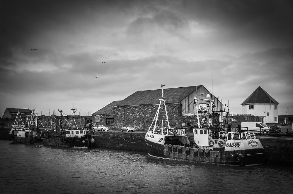 Maryport fishing fleet