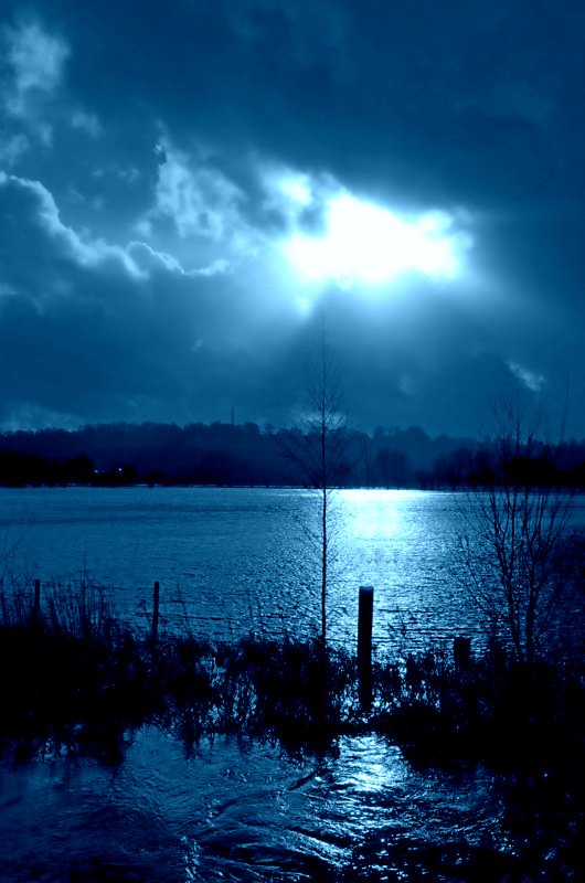 Blue in moonlight