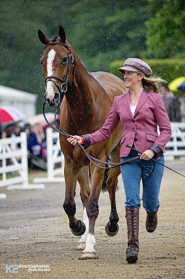 The First Horse Inspection In The Rain
