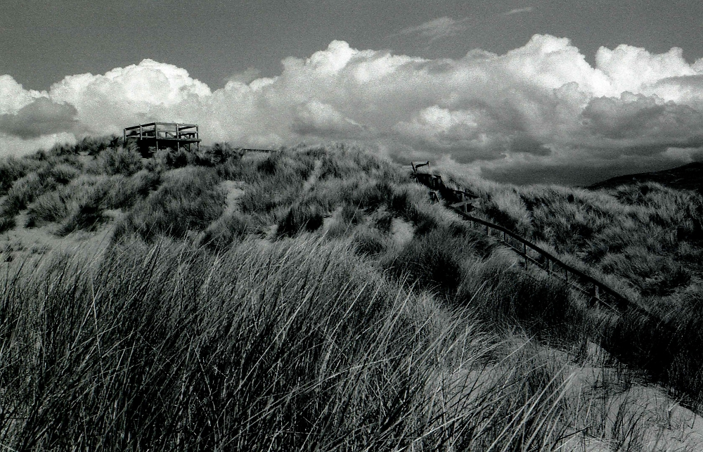Seeking Sky