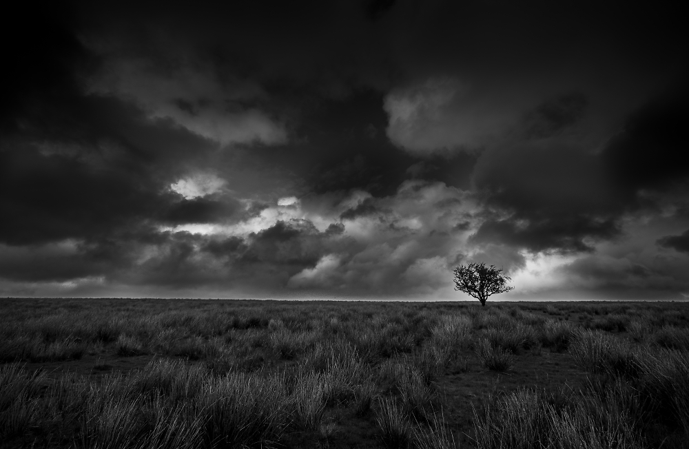 Exmoor in the summer time....