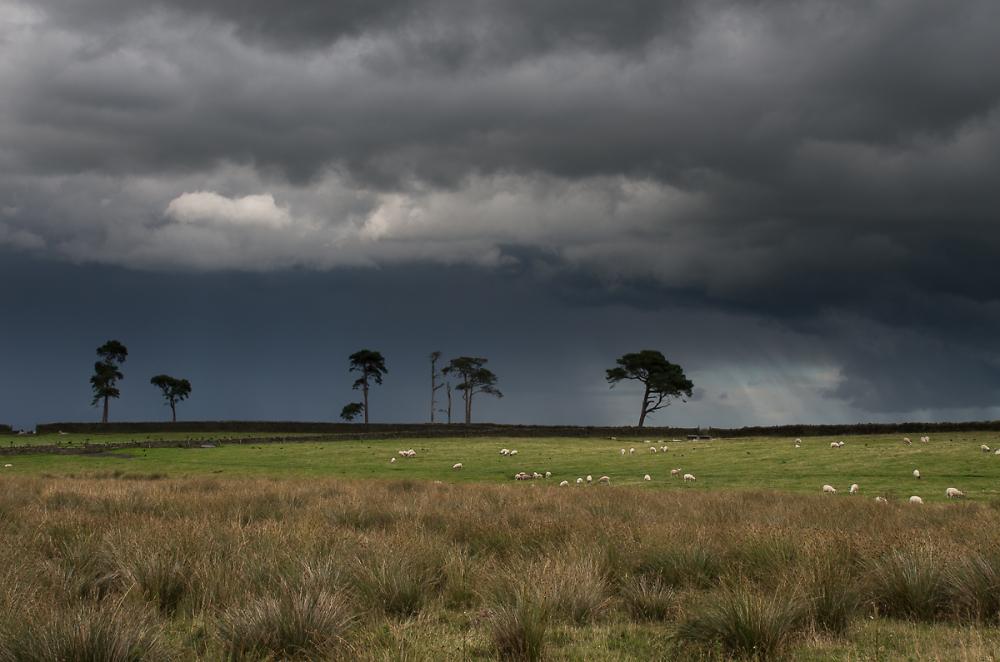 Northumberland Skyline
