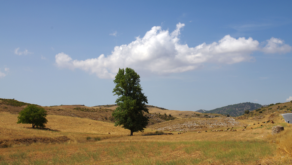 High Plains, Andalusia