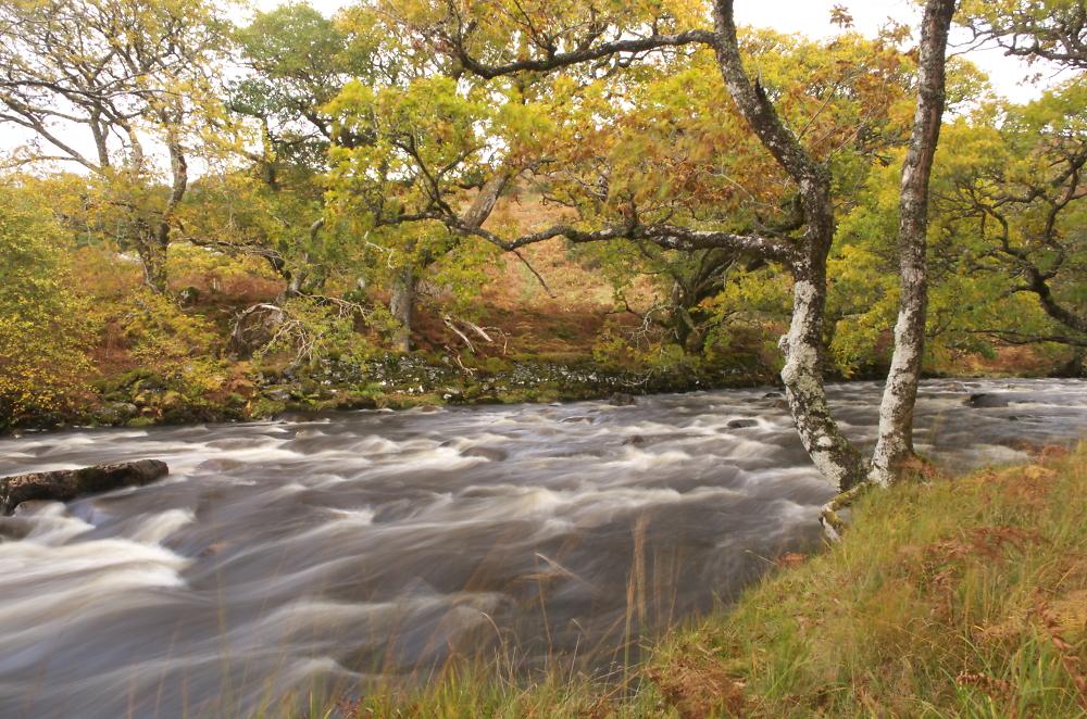 More River Run