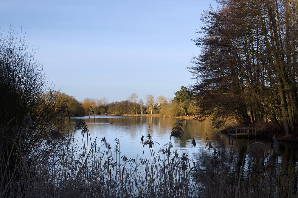Suffolk lakes