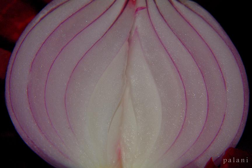 Onion Lines