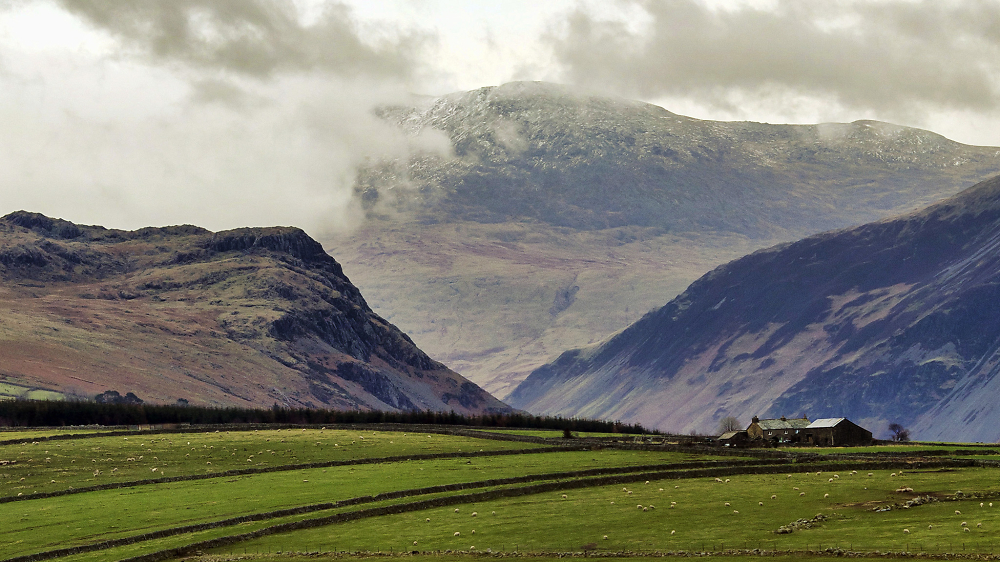 Scafell from Whinnerah