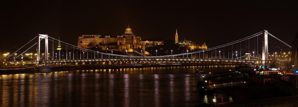 Budapest Castle and Elizabeth Bridge