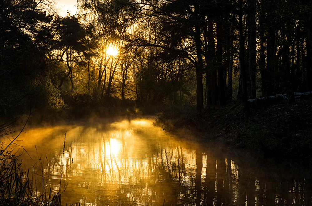 Canal Dawn in April