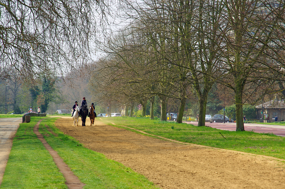 Hyde Park in springtime