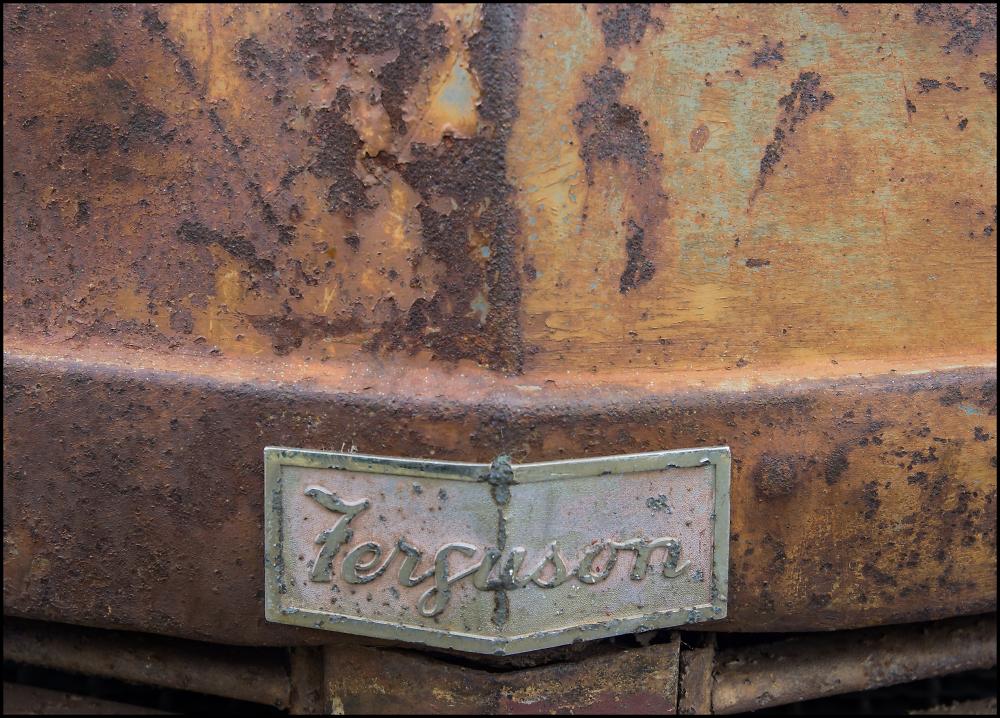Ferguson T20