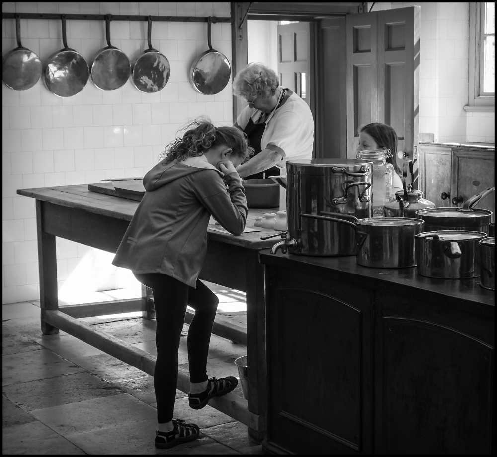 The Cookery Lesson