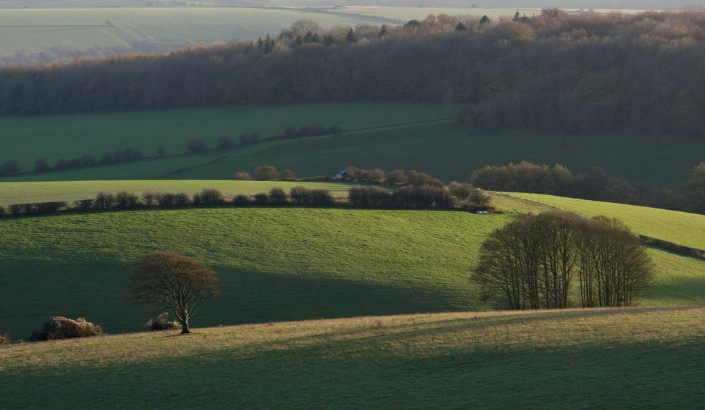 afternoon on the South Downs