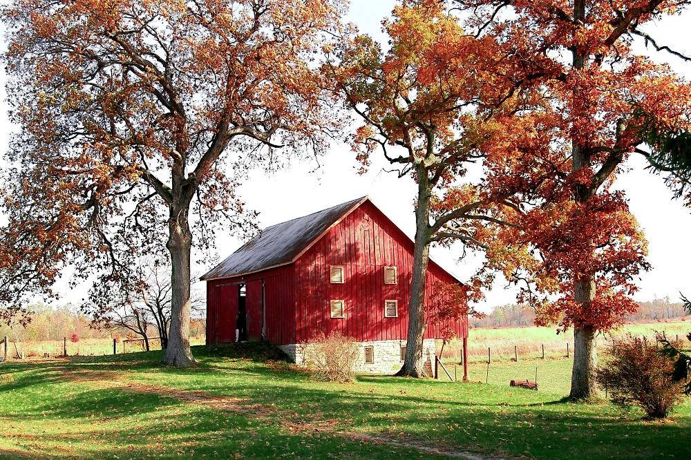 Rural Autumn Ambiance