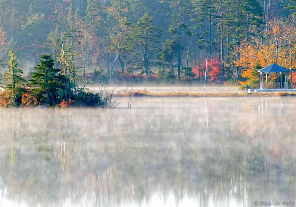 The mists of Fall - and being up early!