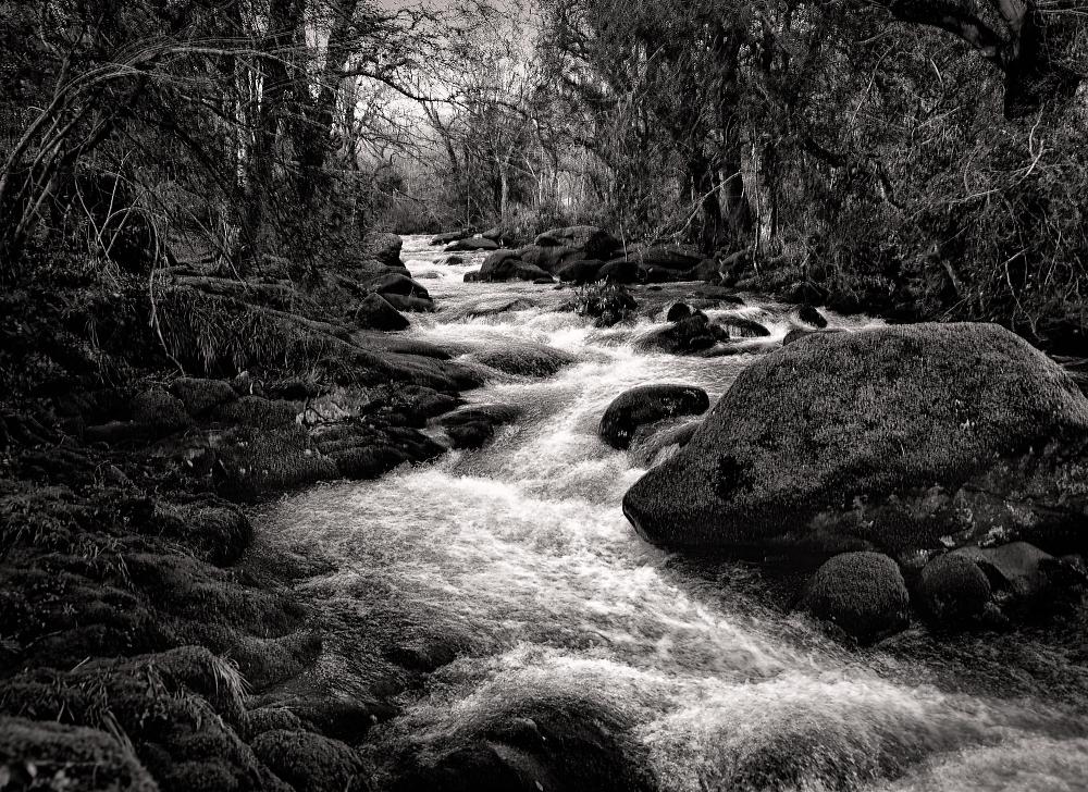 More of Dartmoor
