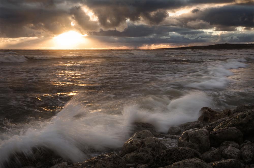 Morning, Shields beach.