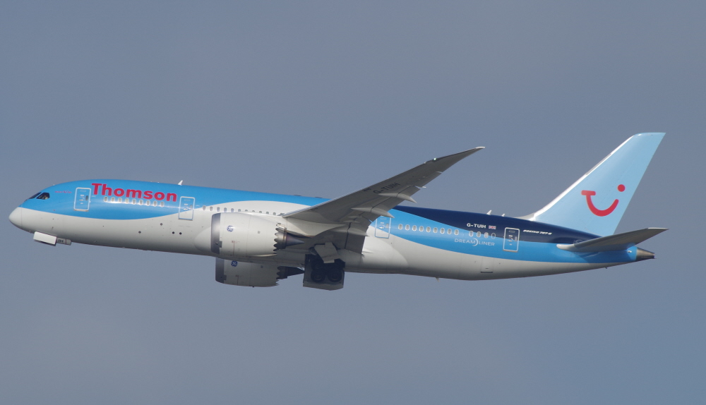 787 Flight Manual
