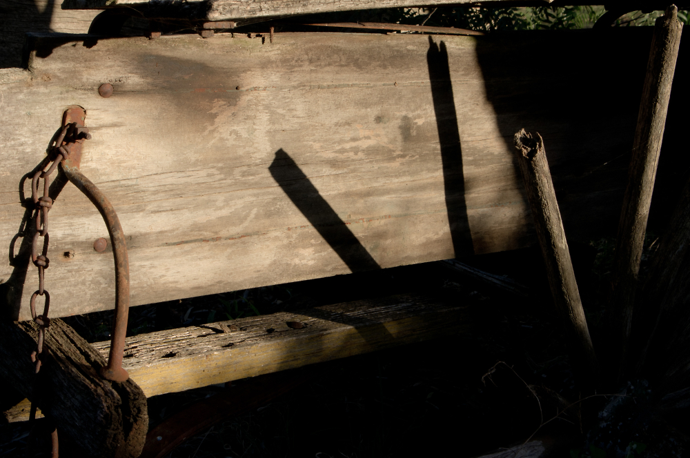 Old Bones Cast Long Shadows...