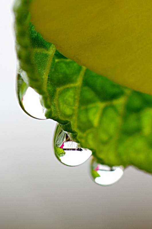 three droplets