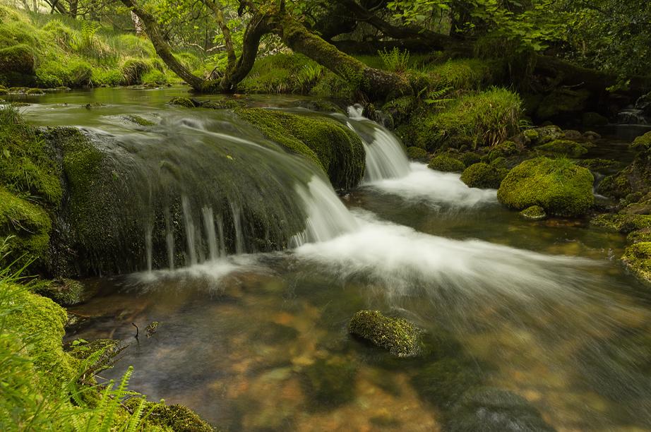 Glaze Brook falls