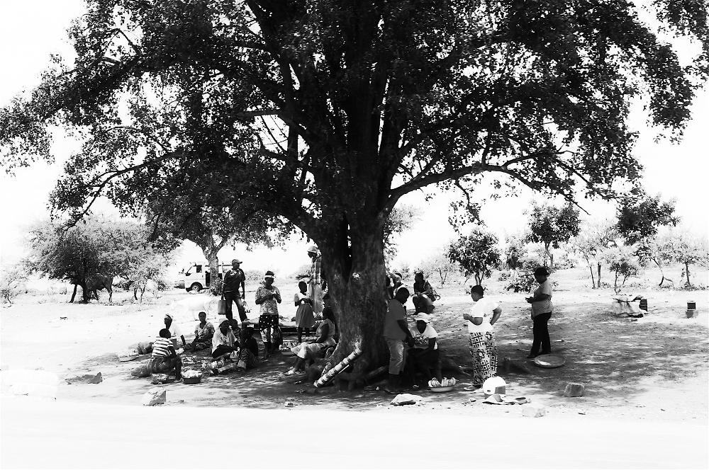 Traditional Rhodesian/Zimbabwean bus stop.