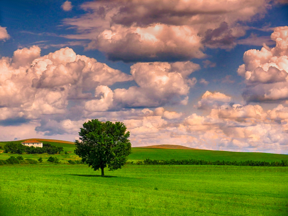 Grumbling Clouds