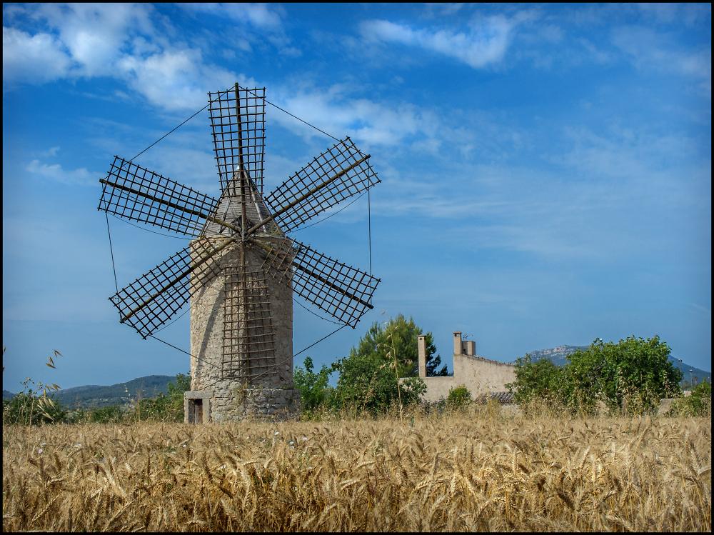 Windmill Near Campos, Majorca