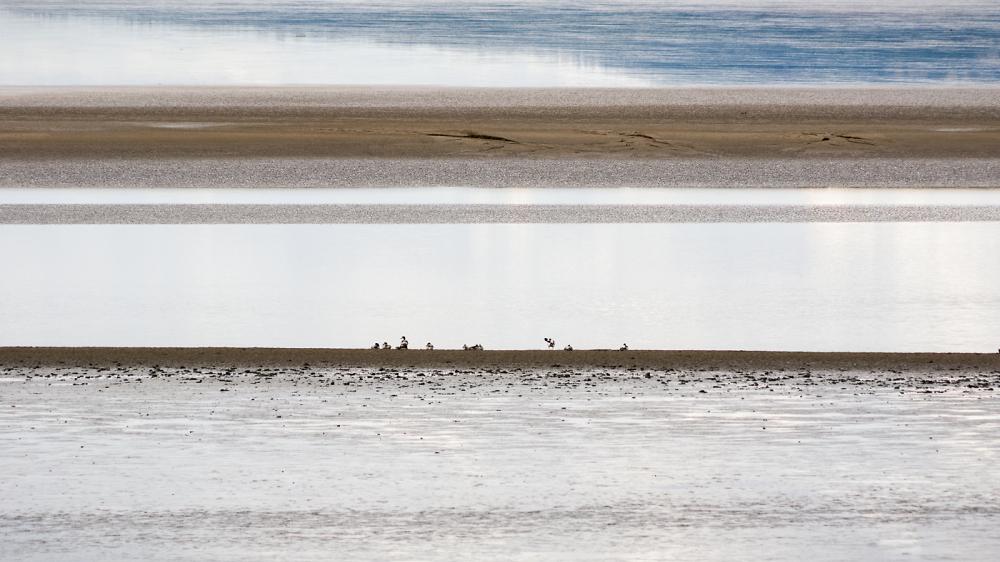 River Severn Low Tide