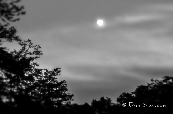 By the Light of the Silvery Moon - Monochrome