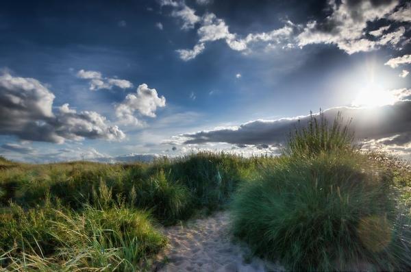 Seaton Sluice Beach
