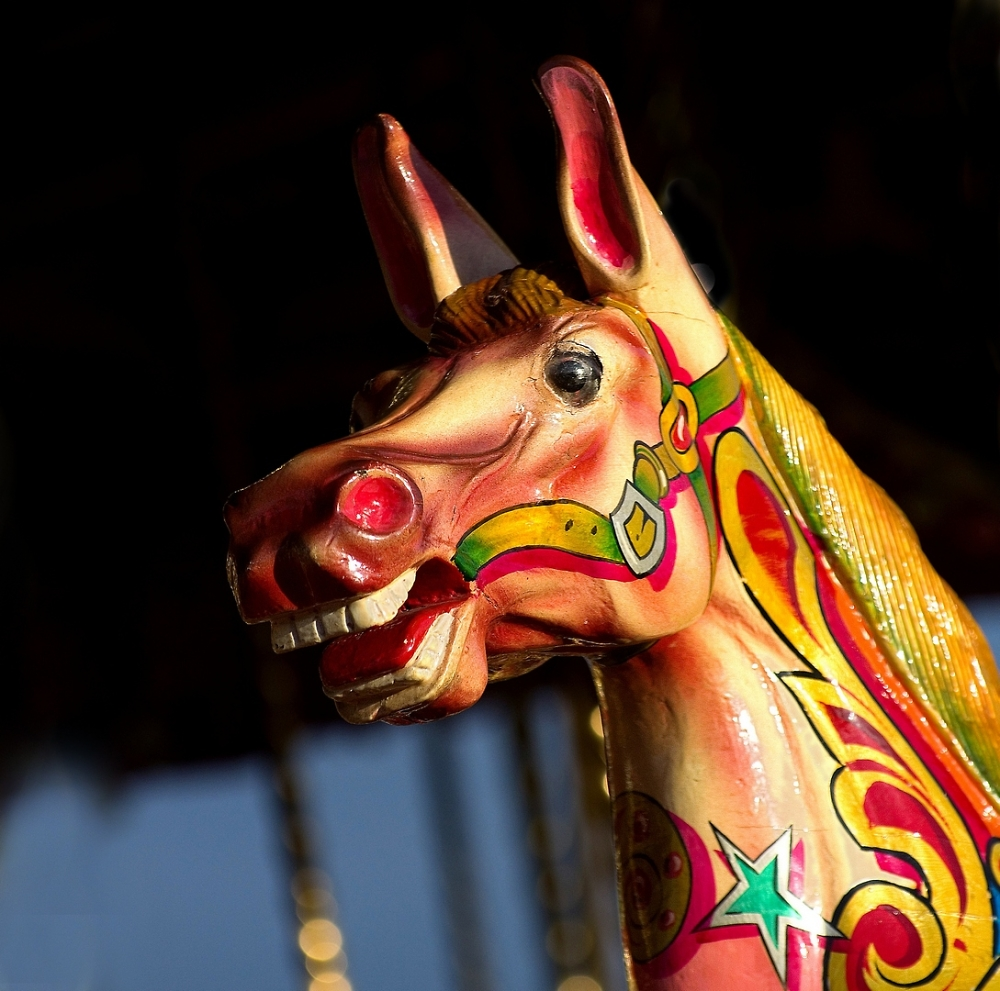 Laughing horse