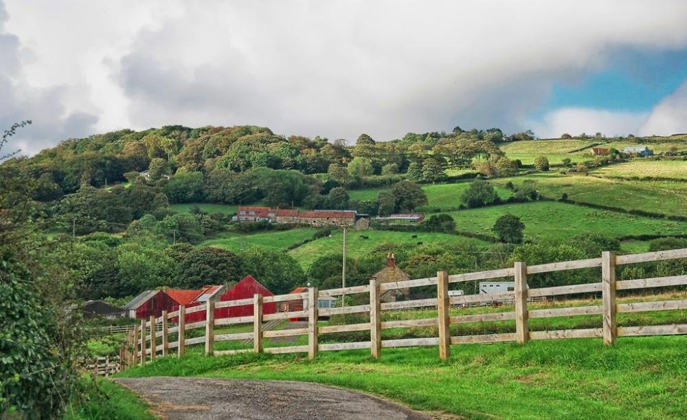 Yorkshire Farm..