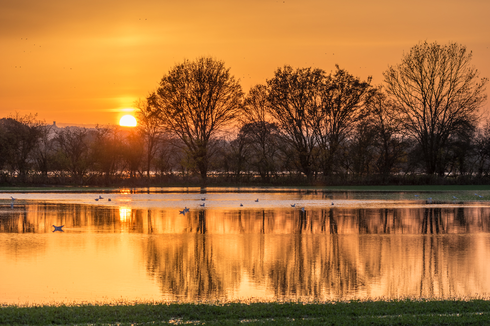 Sunset over the flooded River Stour
