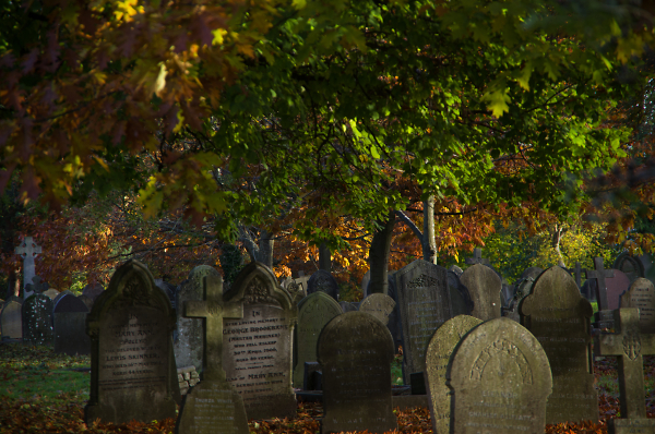 Graves of Autumn