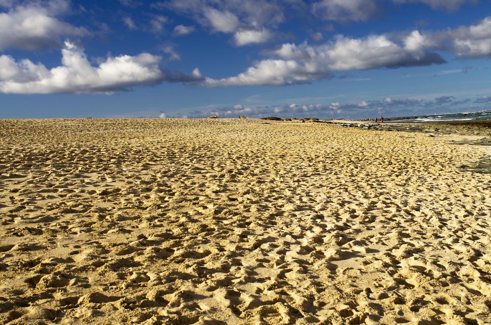 Sand Dunes - corralejo