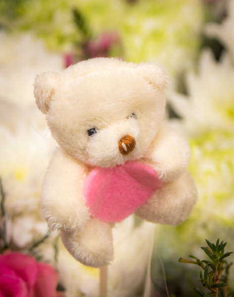 mothers day teddy